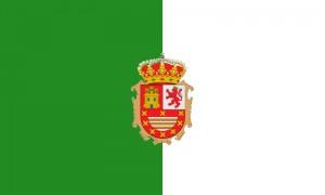 Fuerteventura flag